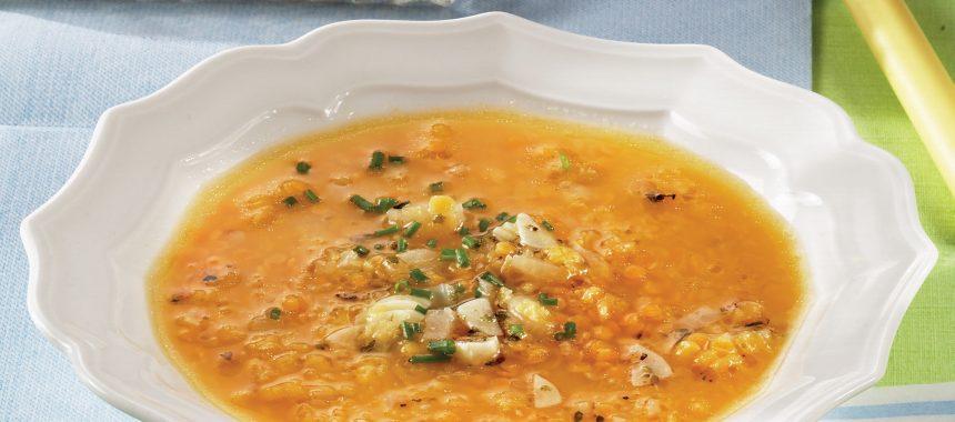 Hitra juha iz leče
