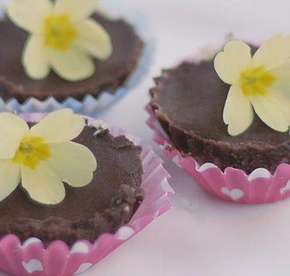kokosovi piškoti s čokolado