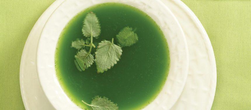 Koprivna juha za pomladne dni