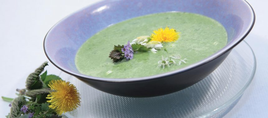 Razstrupljevalna juha iz regrata in cvetače